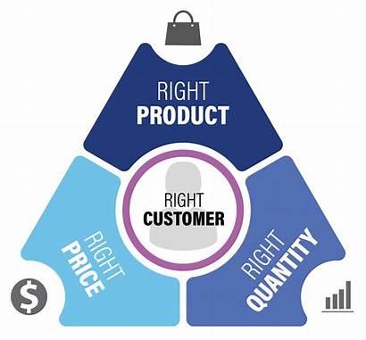 Customer Centric Insight Consumer Merchandising Centricity Platform