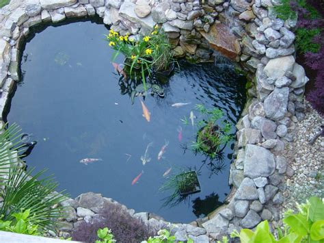 koi fish pond design luxury koi fish pond design ideas home trendy