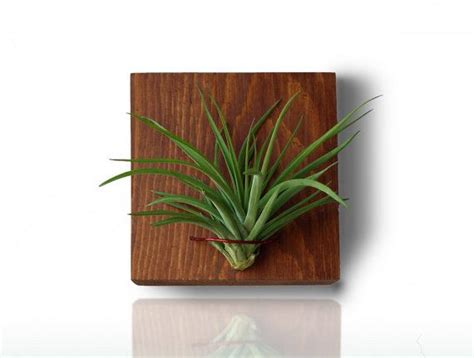 Wood Wall Planter Vertical Planter Small Indoor Planter