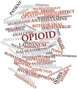 Image result for the other side of the opioid