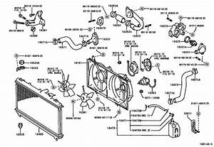 Radiator  U0026 Water Outlet For 2000