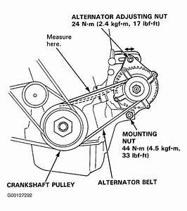 1994 Acura Integra Serpentine Belt Routing And Timing Belt