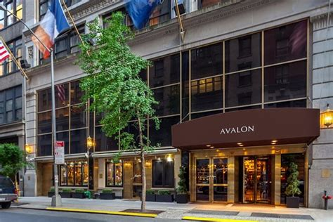 Apartment Hotel New York Tripadvisor by Avalon Hotel Updated 2018 Prices Reviews New York