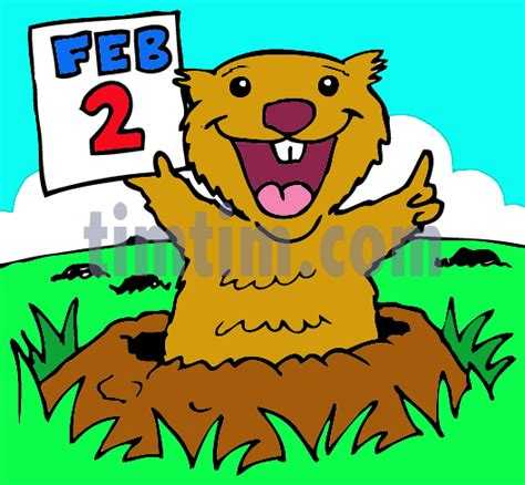 drawing groundhog category wild animals timtimcom