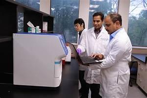 UToledo research finds link between refined dietary fiber ...
