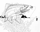 Fly Coloring Trout Fishing Fish Adult Drawing Rainbow Colouring Ink Pen Sheets Template Manly sketch template