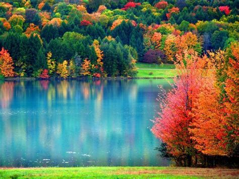 Fall Backgrounds For by Fall Backgrounds Wallpaper Cave