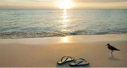 Beach Flip Flops Canaveral Beaches Riparian Rights