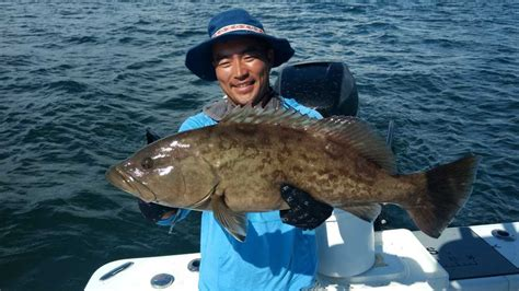 tampa bay fishing endless possibilities offers charters fish steady action caught grouper
