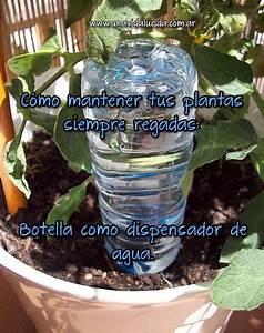 Como mantener tus plantas siempre regadas vida lucida for Como mantener tus plantas siempre
