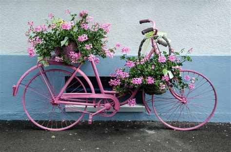 ideas for bathroom floors i sublipalawan style bicycle flower planters for the