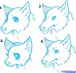 How to Draw Anime Wolves, Anime Wolves, Step by Step ...