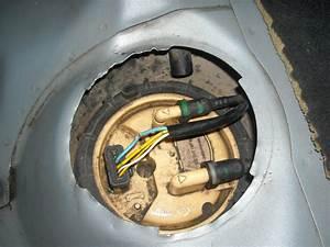 Pompe De Gavage 306 Hdi : pompe de gavage xsara picasso 2 0 hdi pompe de gavage peugeot citroen 2 0 hdi pompe de gavage ~ Medecine-chirurgie-esthetiques.com Avis de Voitures