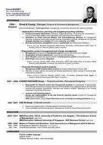 ernst and young resume sample - please download my cv here