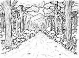 Coloring Forest Pages Enchanted Printable Rainforest Jungle Tree Trees Books Bestcoloringpagesforkids Animal sketch template