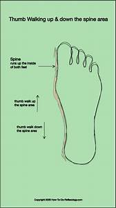 Foot Reflexology Complete How To Techniques  U0026 Step By Step