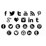 Social Icons Font Background Clear Fonts Pink