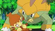 Ash's Torterra   Pokémon Wiki   FANDOM powered by Wikia