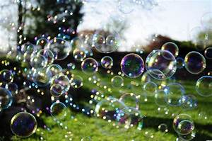 Daily Prompt: Bubble – A Nature's Path