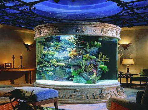 Fish Tank Decoration Ideas  Decorating Ideas