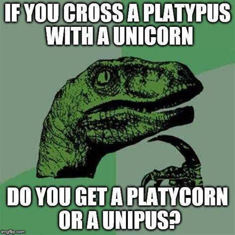 Platypus Meme - interspecies love imgflip