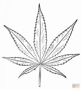 pot leaf coloring page free printable coloring pages With weed leaf template