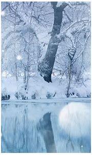 Winter Snowfall HD Desktop Wallpapers : High Definition ...