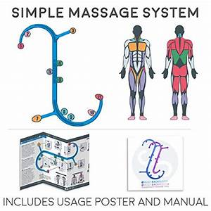 Teres Major Trigger Points And Referred Pain