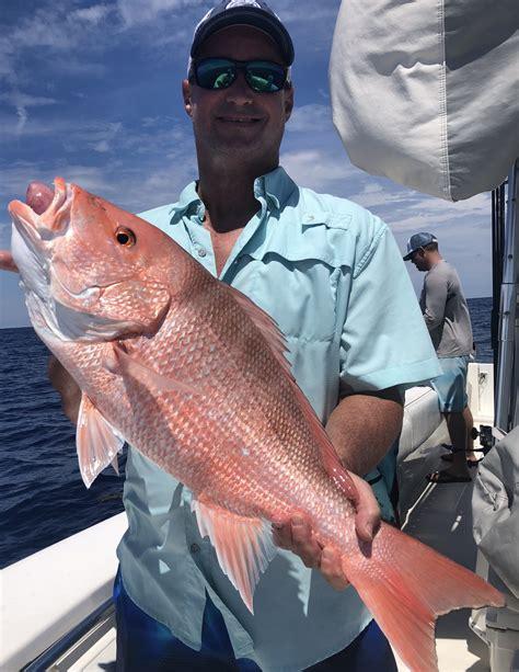 snapper fishing charters seasonal florida deep sea gulf fl mexico charter sportfishing