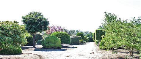 Garten Sichtschutz Schweiz by Sichtschutz 187 Luxurytrees 174 Schweiz
