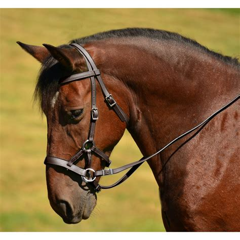 bridle bitless leather side english horse pull brown sidepull saddle natural genuine bridles tack noseband western reins saddles donkey twohorsetack