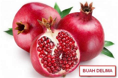 12 manfaat hebat buah delima bagi kesehatan daunbuah com