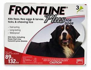 best merial frontline plus flea and