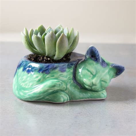 kitty planter succulent cactus handmade ceramic pottery planter plants ceramic plant pots