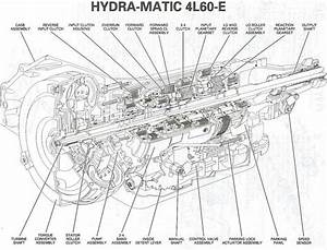 31 Chevy 350 Transmission Diagram