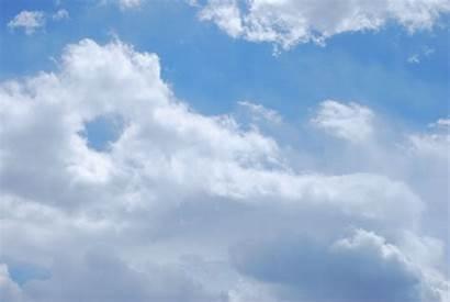 Cloud Spotting Alligator Clouds Animals Sea Fluffy