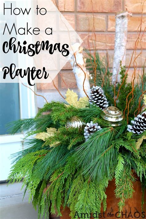 how to make a christmas planter amidst the chaos