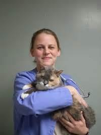 brookpark animal hospital meet our team metropet veterinary clinic