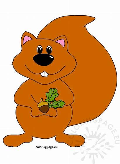 Squirrel Clipart Coloring Autumn Clip Cartoon Clipartix