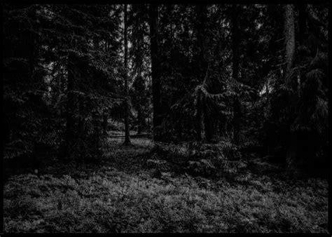 René Timmermans Photography