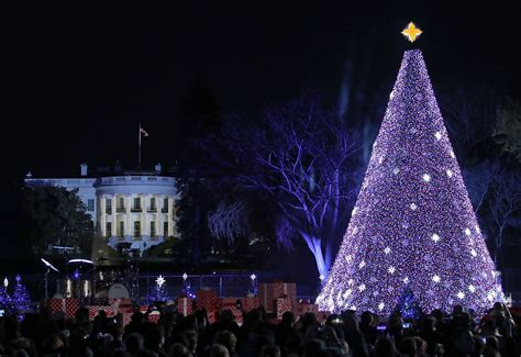 national christmas tree photos in washington dc