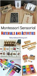 Best 25+ Montessori sensorial ideas on Pinterest ...