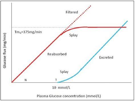 tmg transport maximum reabsorption  glucose  normal