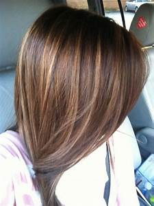 Brown Long Hairstyle Color Ideas with Highlight – Long ...