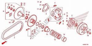 Clutch For Honda Pcx 150 2017   Honda Motorcycles  U0026 Atvs