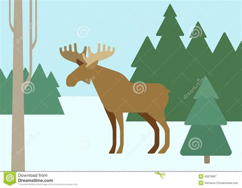 Vector Wild Animals On The Forest. Vector Illustration