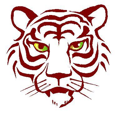 zimbio celebrity cartoon images  tigers