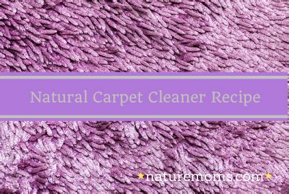 Natural Rug Cleaner Recipe by 301 Moved Permanently