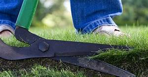 The Complete Guide To Lawn Edging