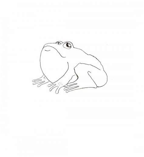 simple animal drawings  beginners